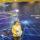 """В  Москве прошел Международный форум инновационных транспортных технологий """"Автонет""""."""